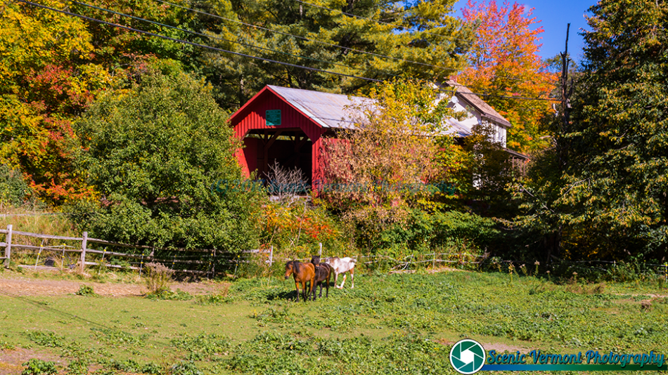 Northfield-Vermont-10-6-2016-59