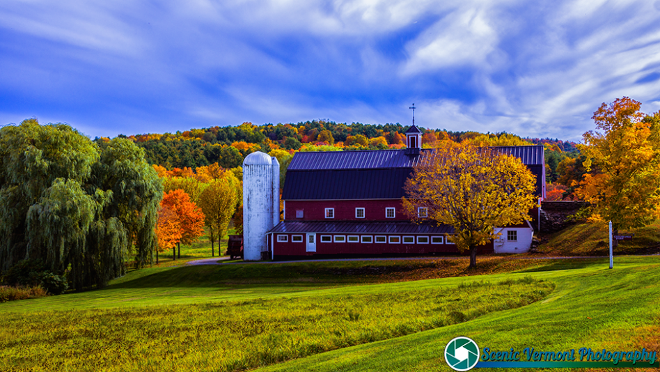 Greenrange-Farm-Sudbury-Vermont-10-12-2019-28-Edit-Edit
