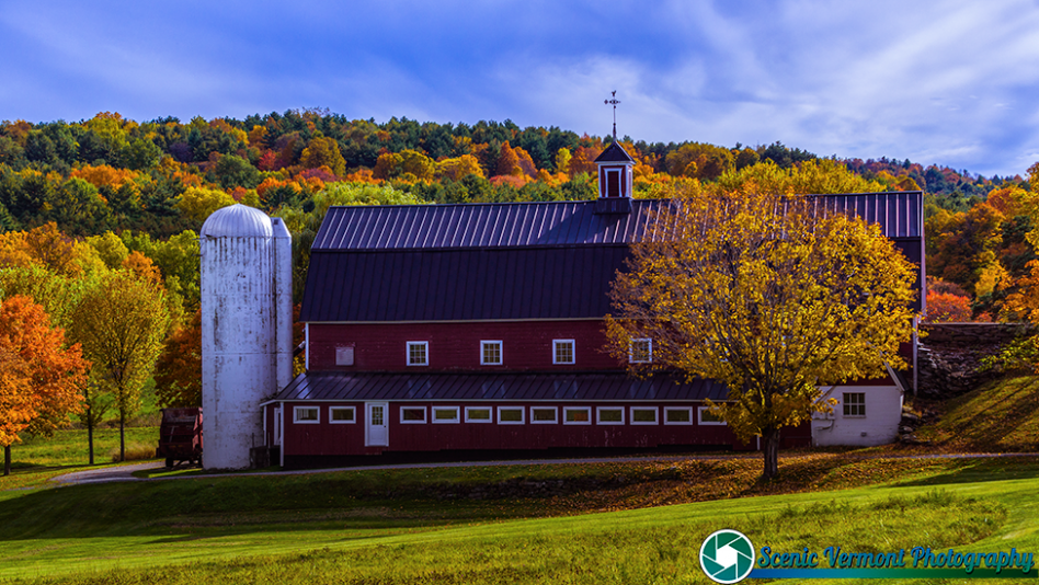 Greenrange-Farm-Sudbury-Vermont-10-12-2019-34-Edit-Edit