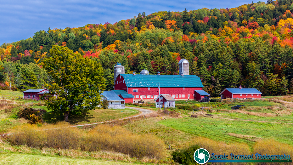 Hillside-Acres-Farm-Barnet-Vermont-9-25-2020-7