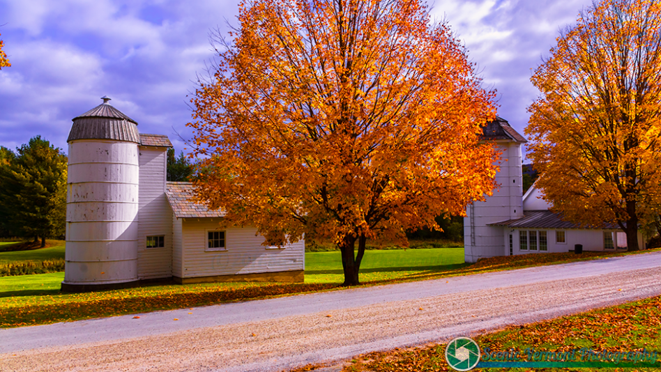 Whimsy-Farm-Arlington-Vermont-10-14-2017-28-2-Edit-Edit