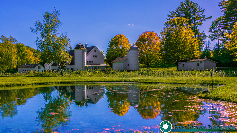 Whimsy-Farm-Arlington-Vermont-9-27-2019-2
