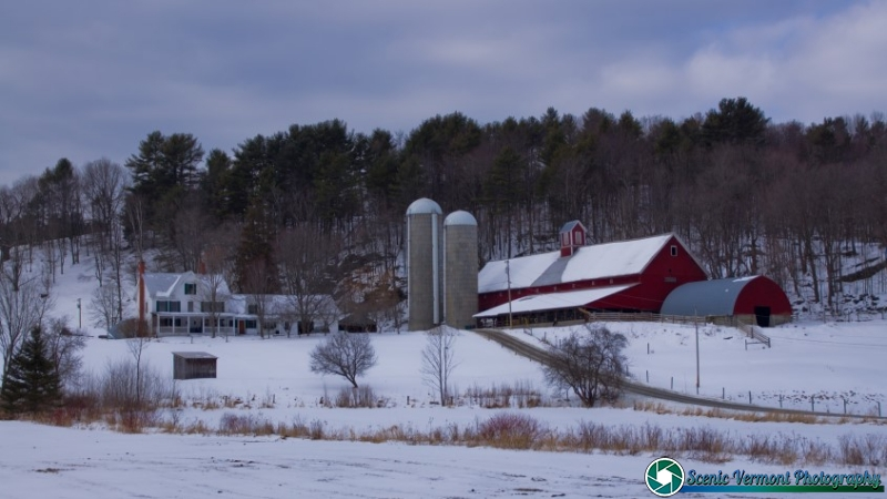 A cold day on the farm in the NEK of Vermont.